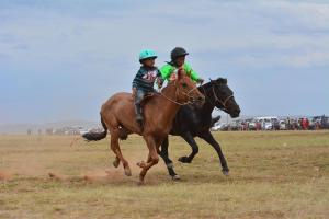 Naadam Festival With Gobi Tour